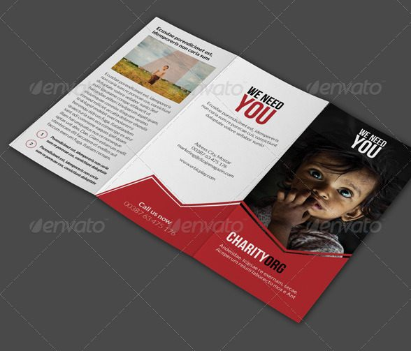 19  nonprofit brochure examples in psd
