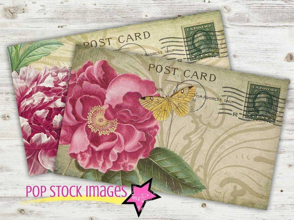 vintage rose 1024x768