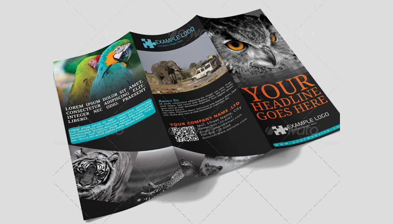 adventure travel agency brochure