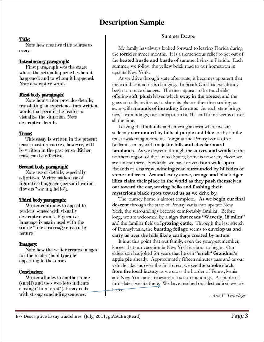 Good Descriptive Essay Examples for All Students