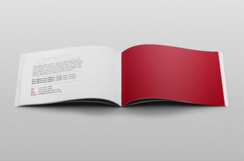 elegant product brochure design