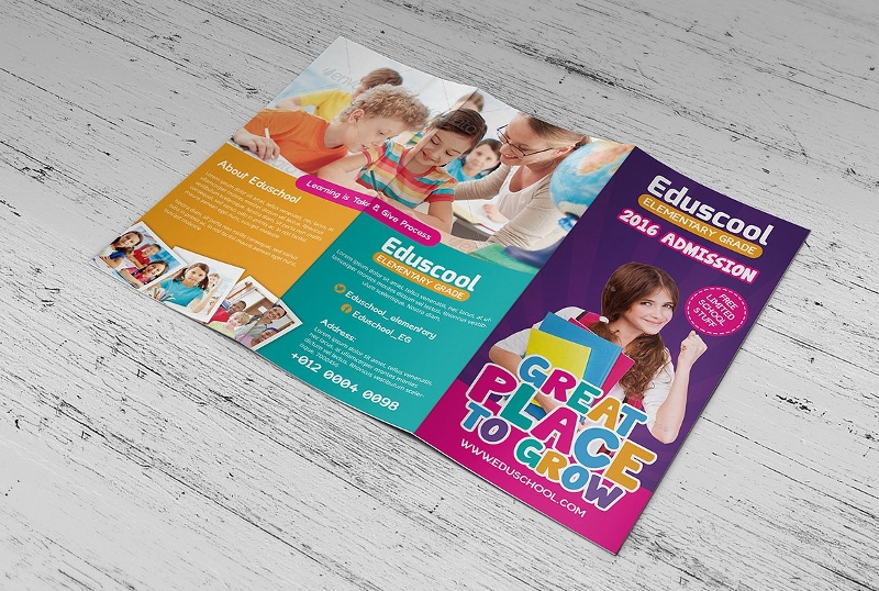 elementary school education trifold brochure