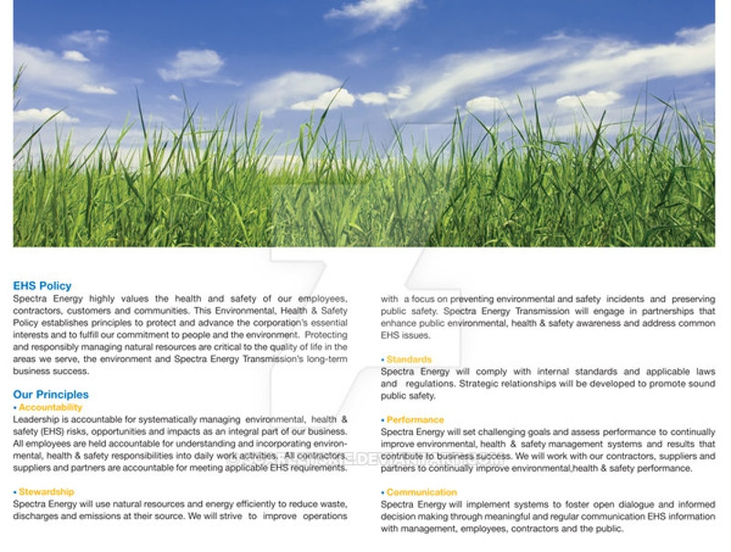 environmental brochure template