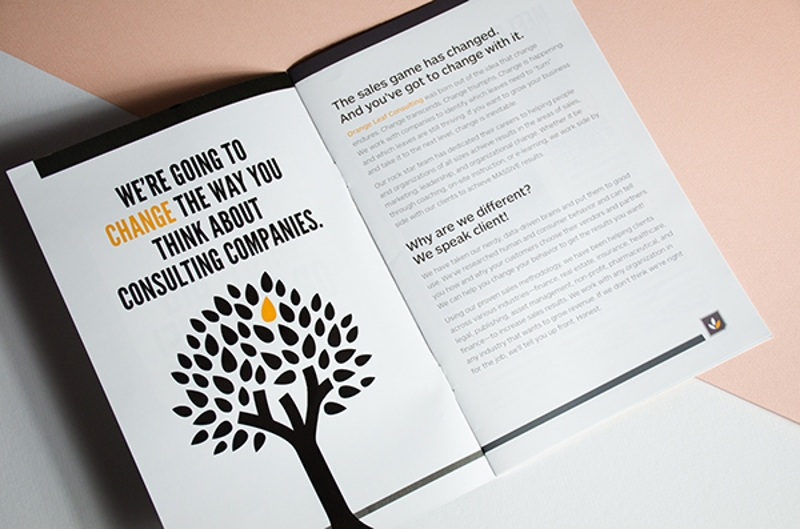 orange leaf consulting brochure