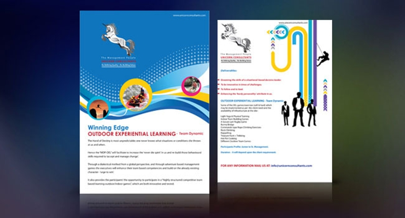 professional consultancy brochure