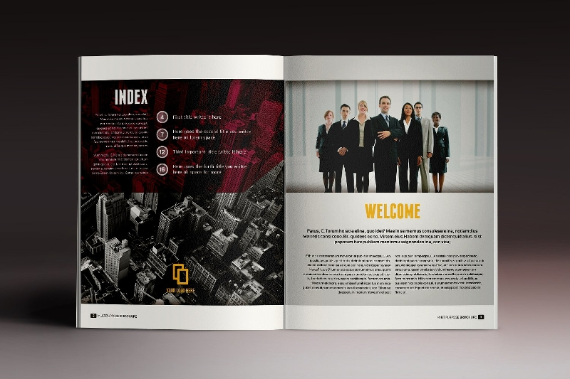 professional multipurpose brochure