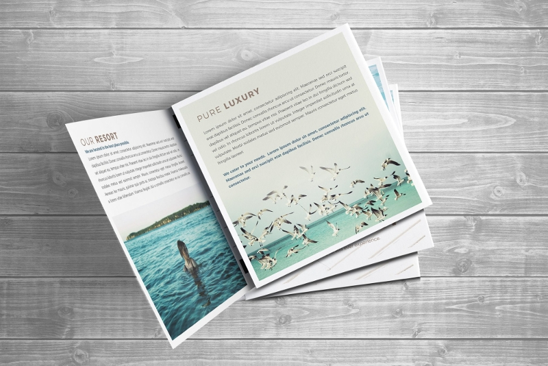 resort trifold square brochure