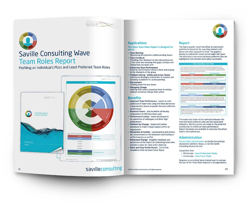 saville consulting brochure