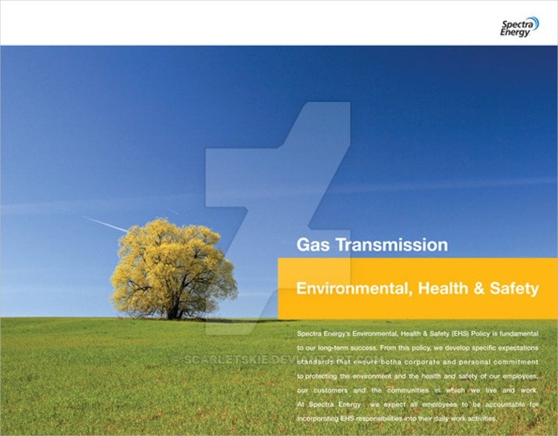 simple environmental brochure2
