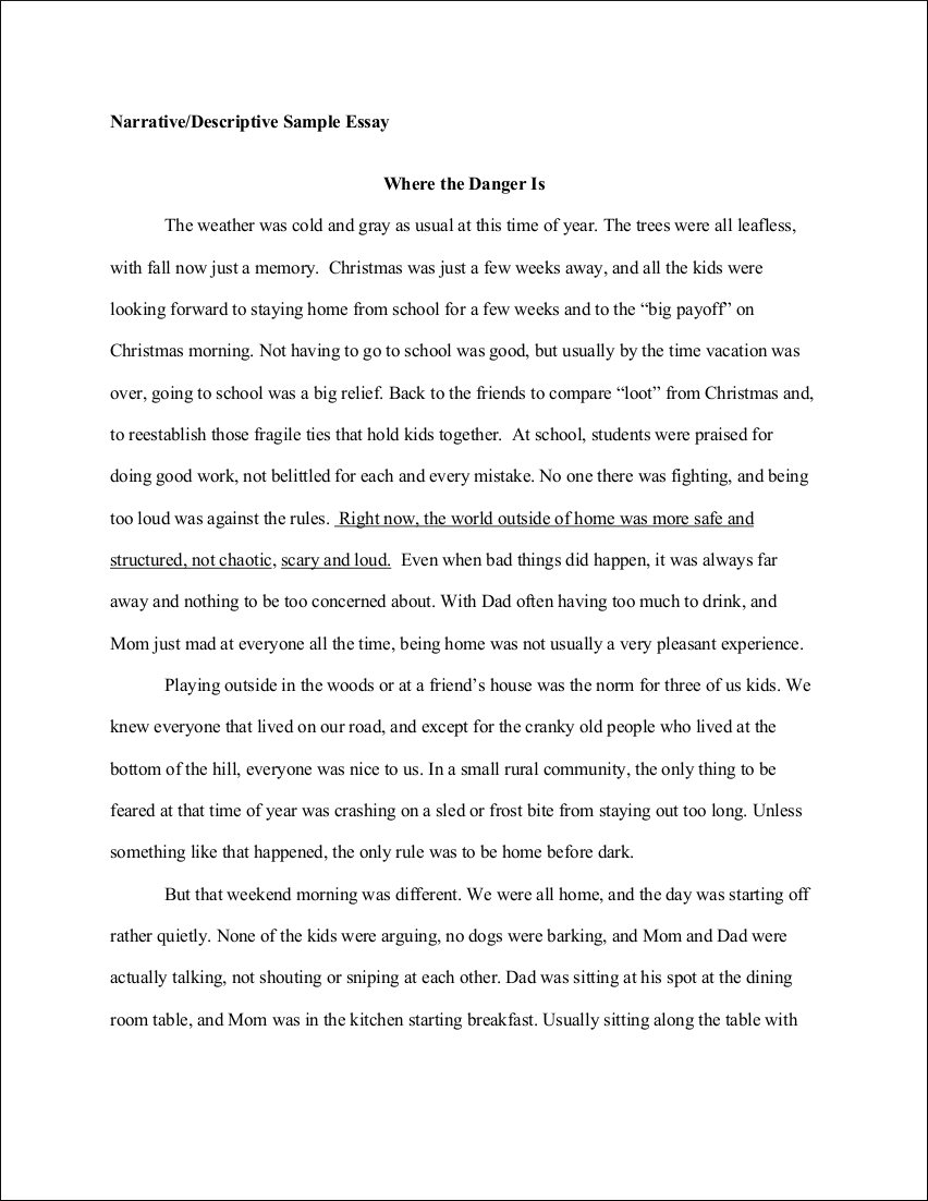 Example Of An Essay Paper Student Descriptive Essay Sample Essay On Healthy Eating also Family Business Essay  Descriptive Essay Examples  Examples Sample Essay Papers