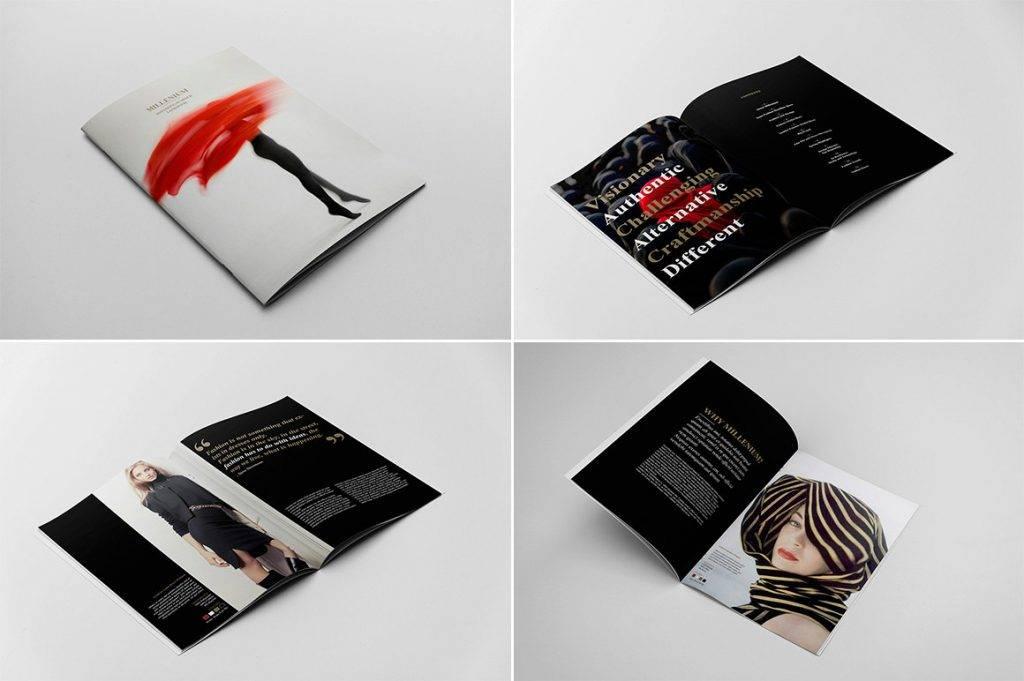 brochure 1024x681
