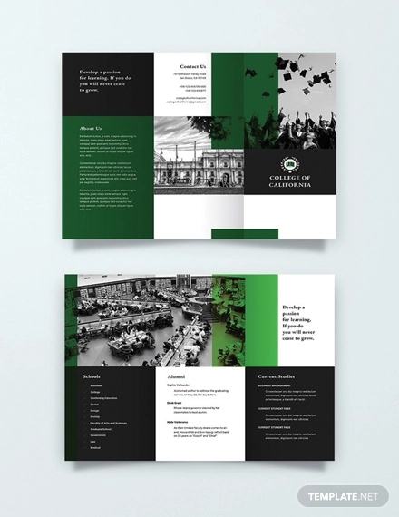 free creative college brochure template