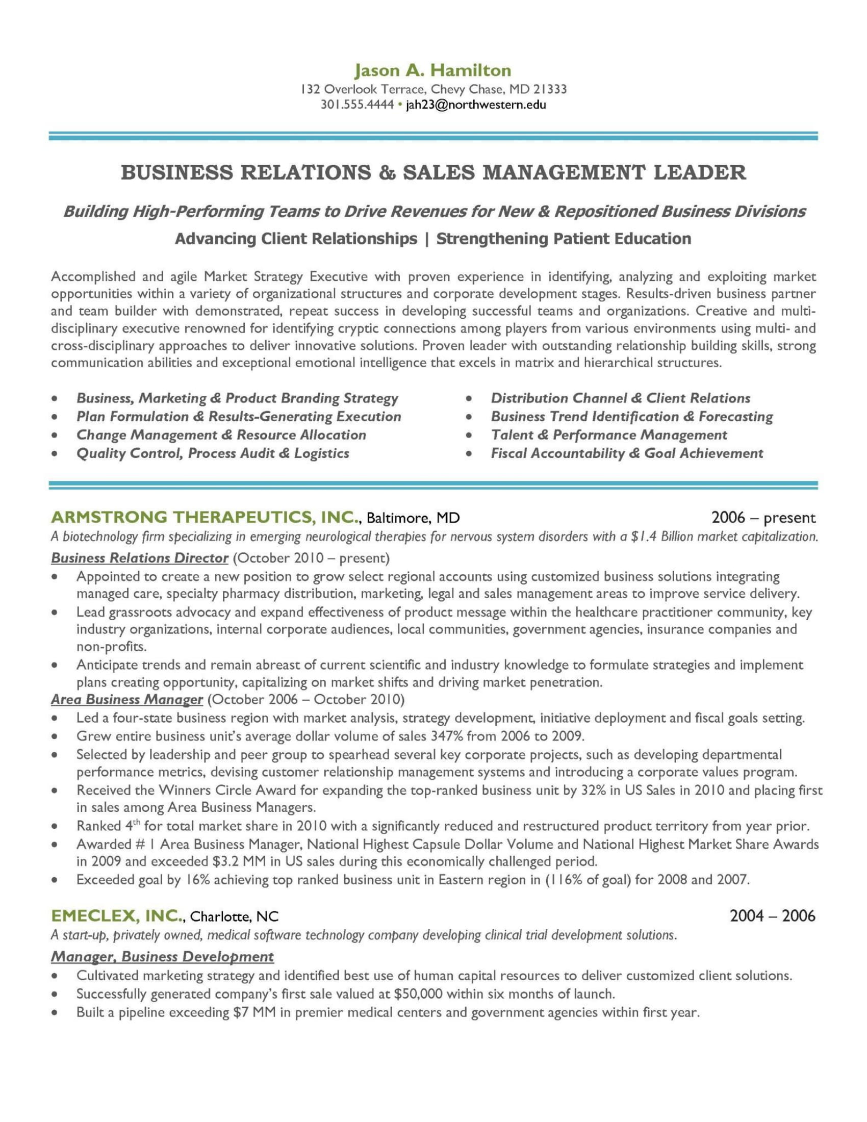 sales and marketing manager career summary example 1