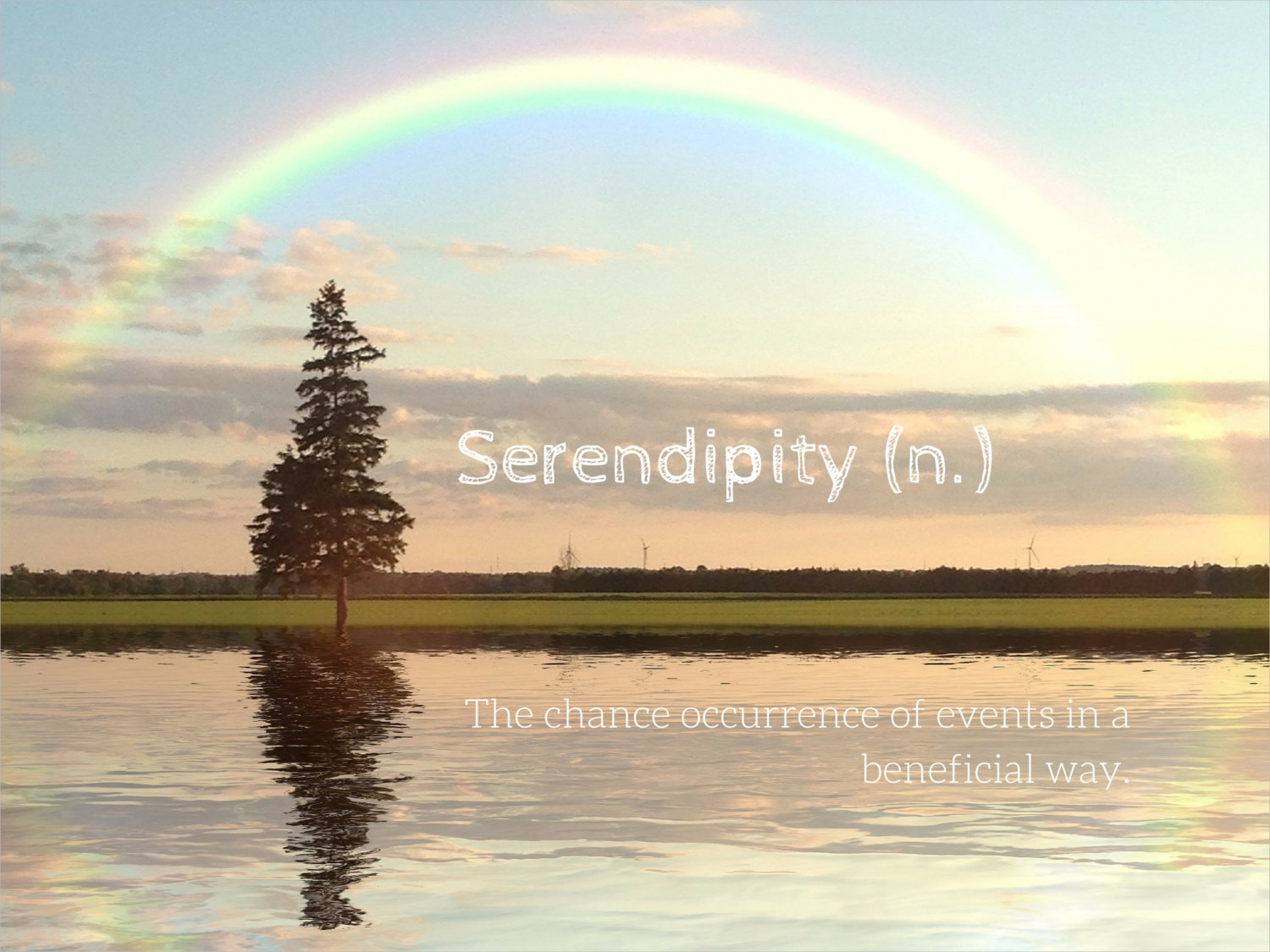 serendipity photo greeting card