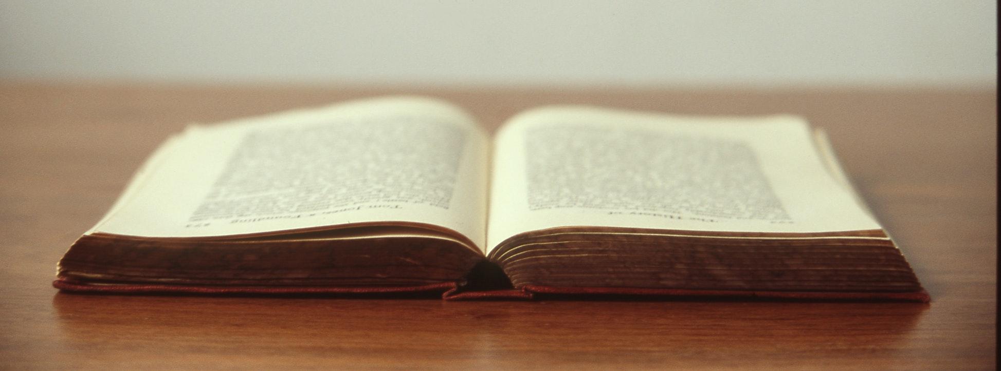alejandroescamilla book