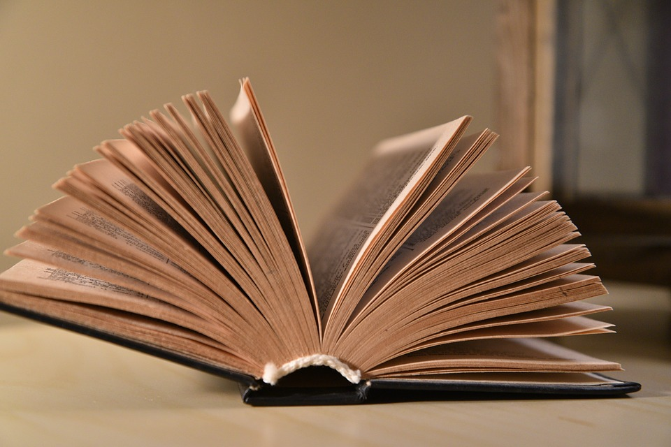 book 3163563