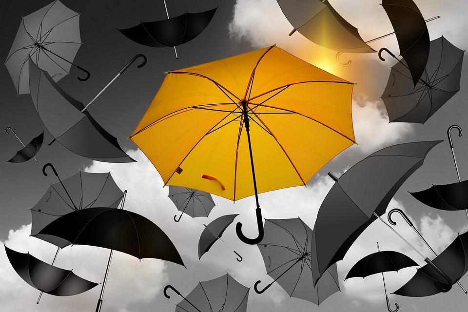 umbrella 1588167