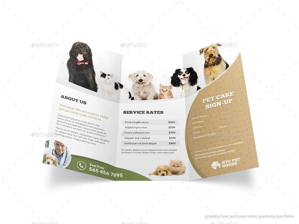 animal care dog show brochure example