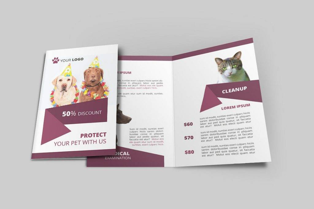 dog show bi fold brochure example
