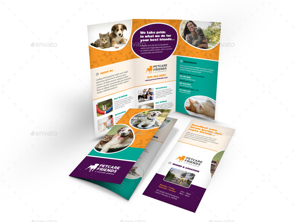 pet care dog show brochure example