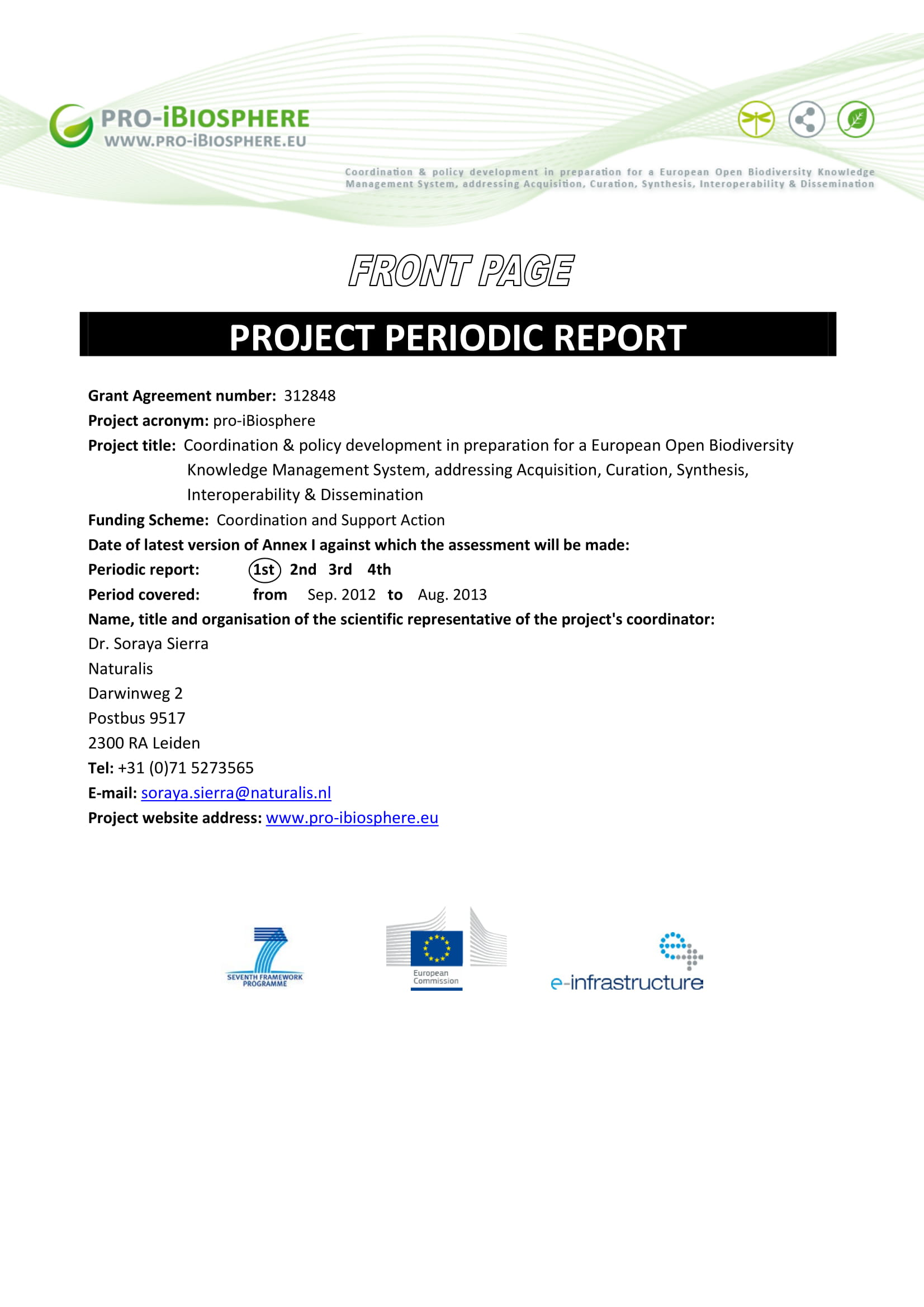 project periodic report example