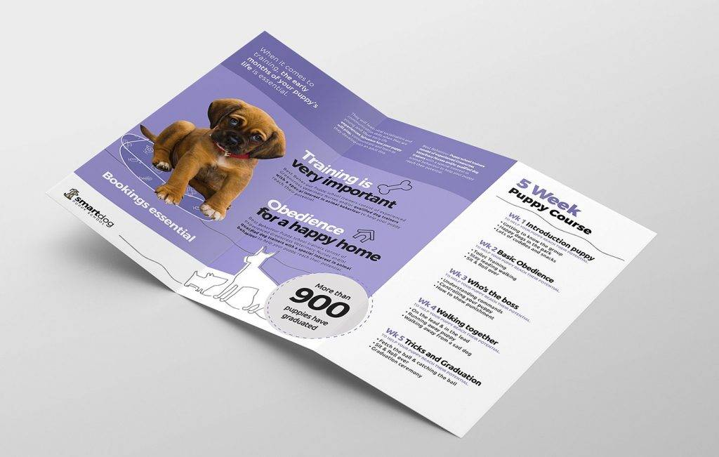 puppy school dog show brochure example