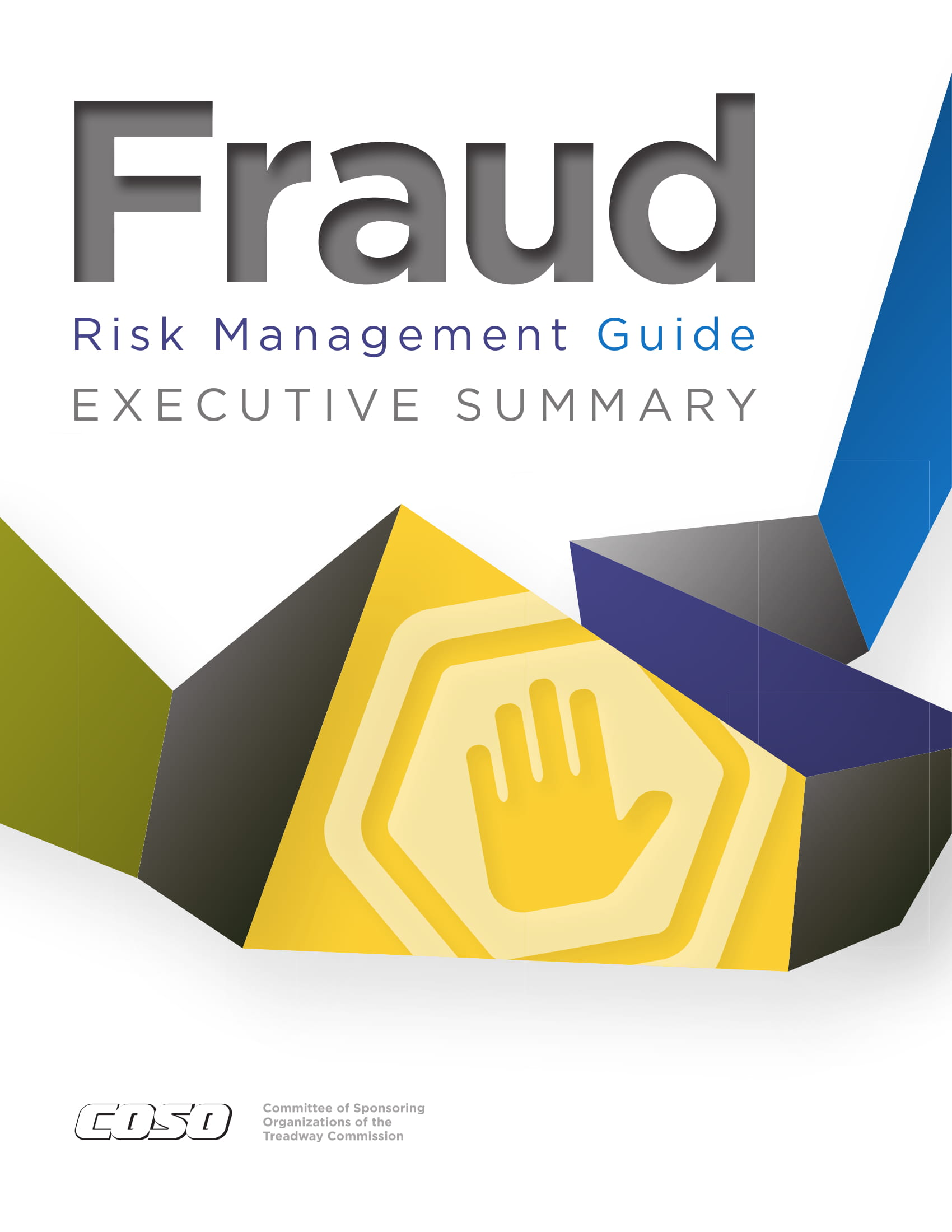 risk management guide executive summary