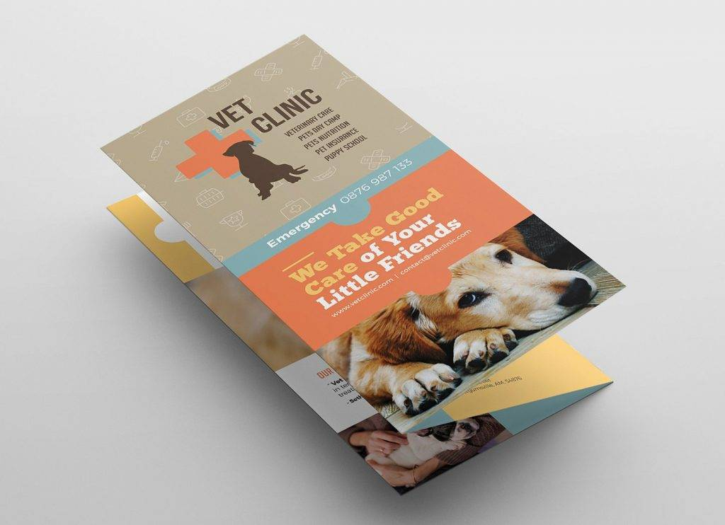 vet clinic dog show brochure example