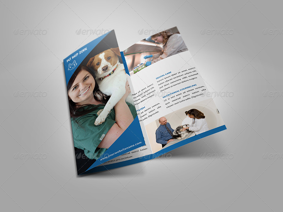 veterinary clinic dog show brochure example