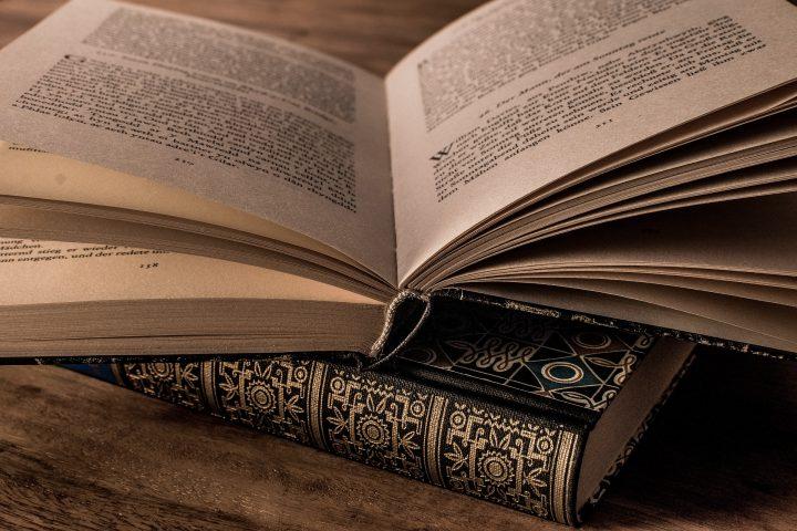 literature 3327172