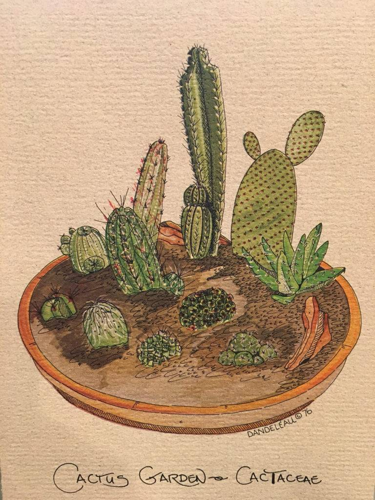 1970s cactus design gift card example