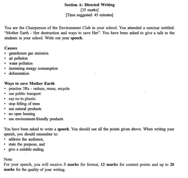 directed writing english report example