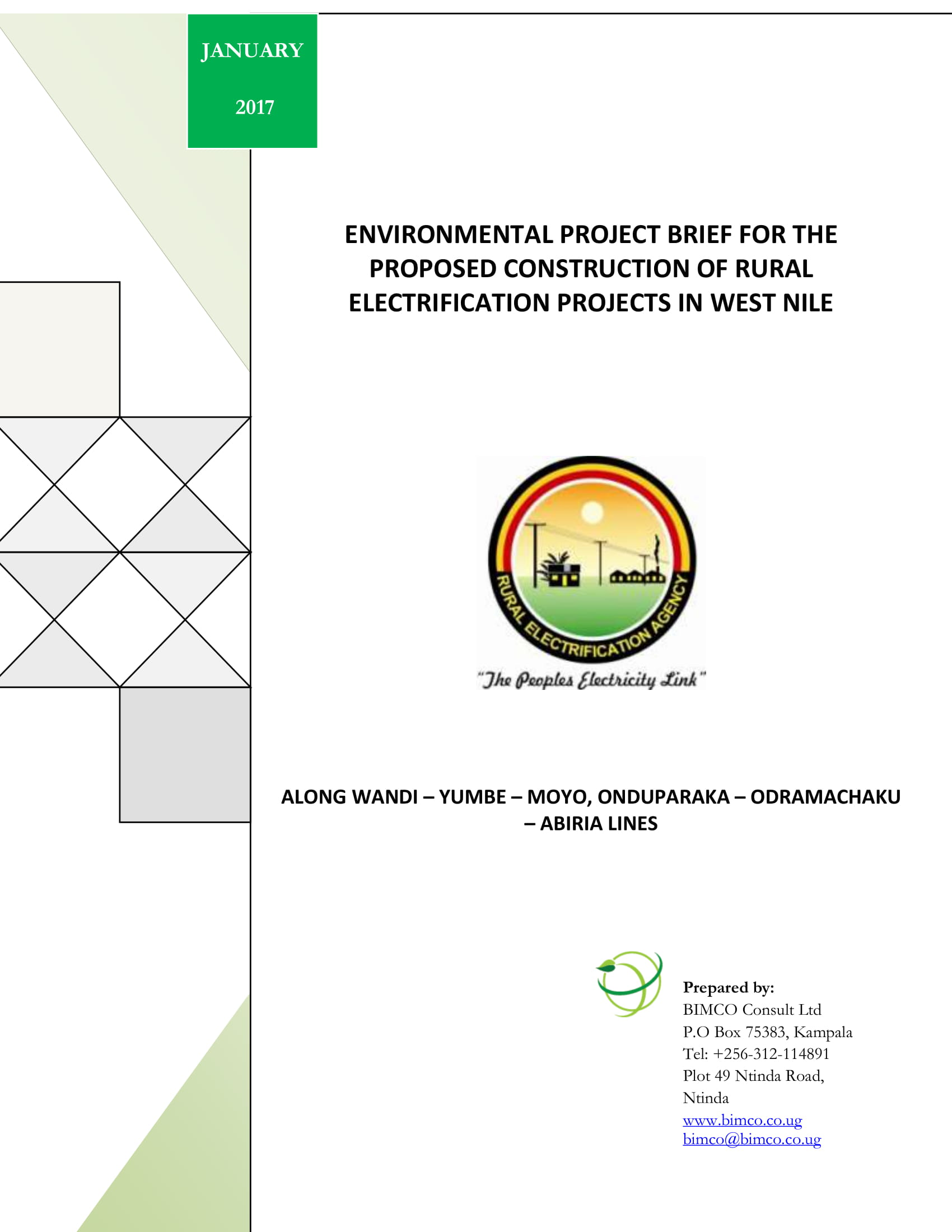 environmental project brief example