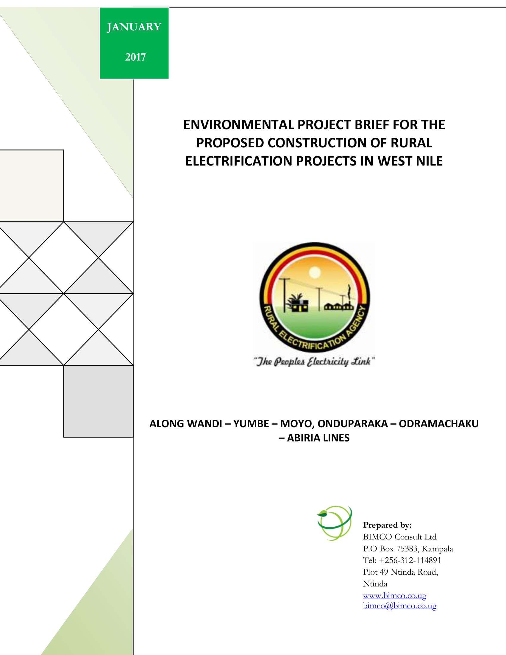 environmental project brief example