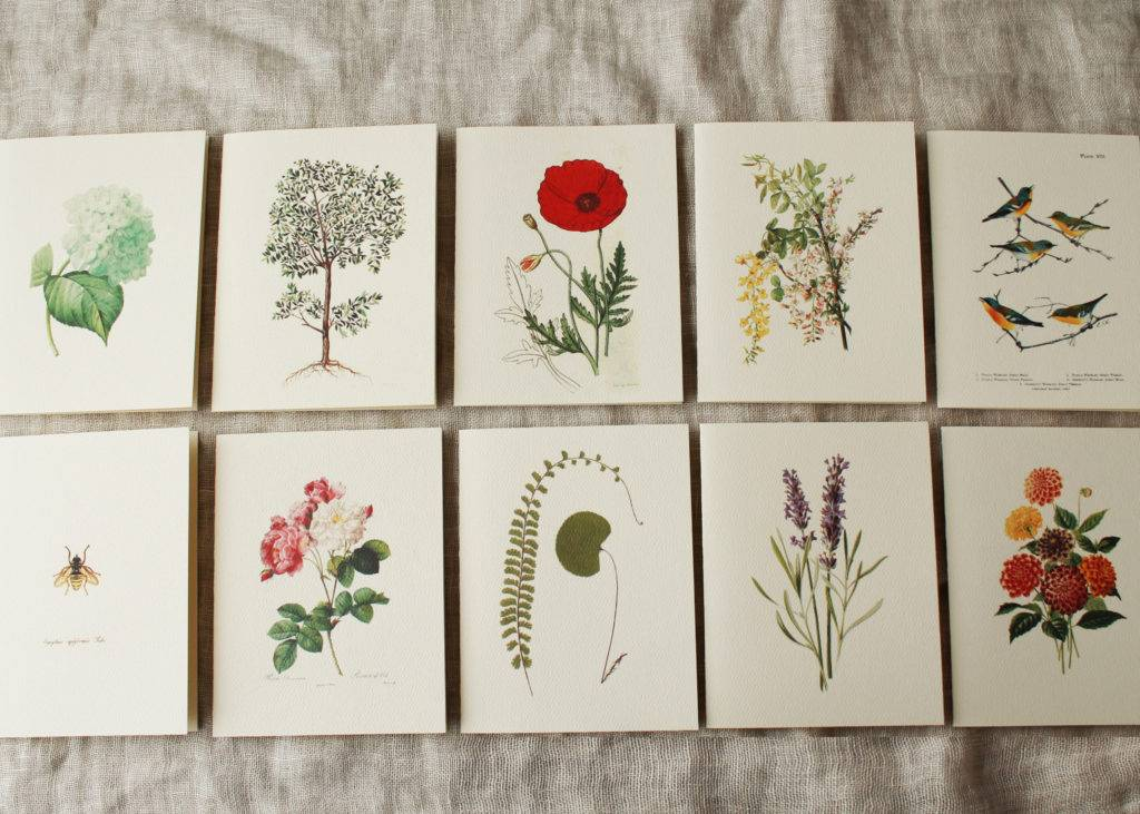 handmade floral variety card pack example