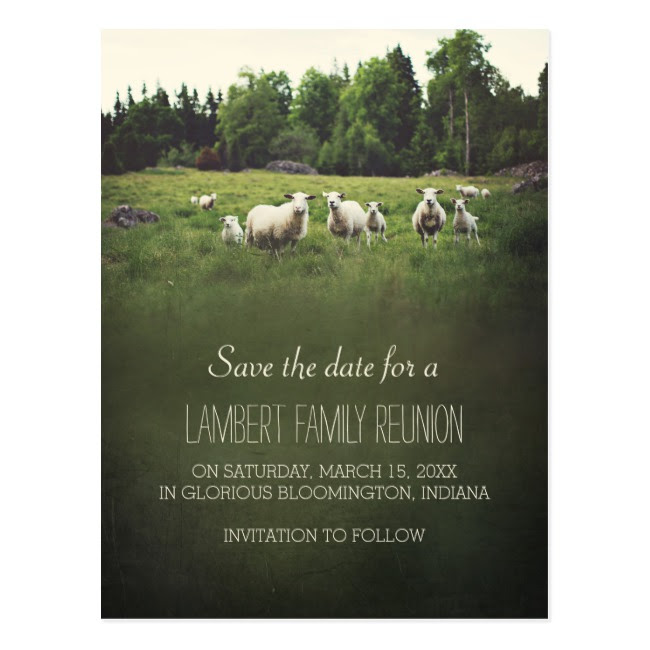 sheep family reunion example
