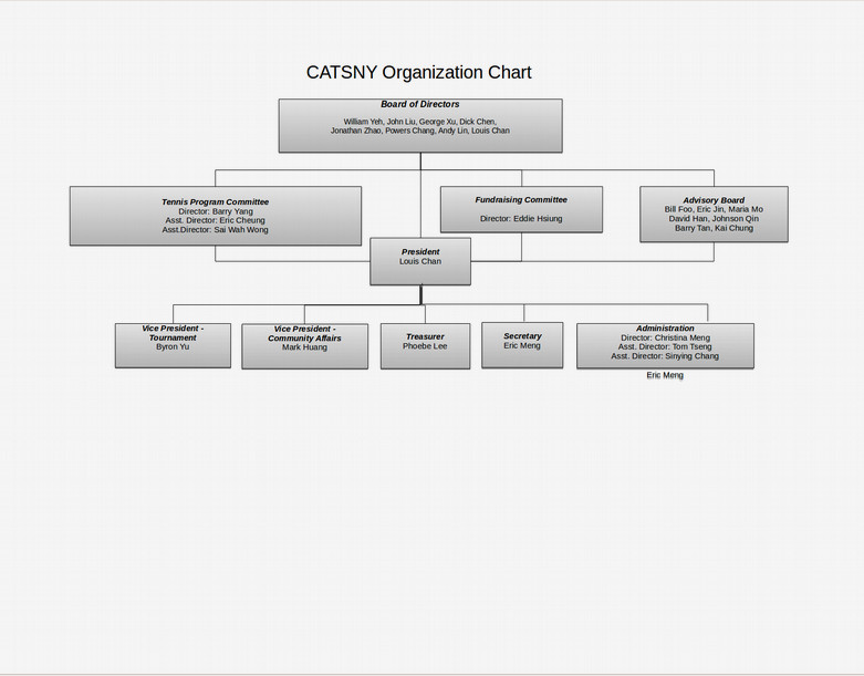 simple organizational chart example1