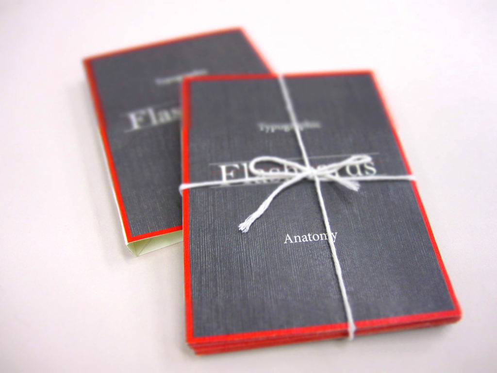 typographic anatomy flash cards