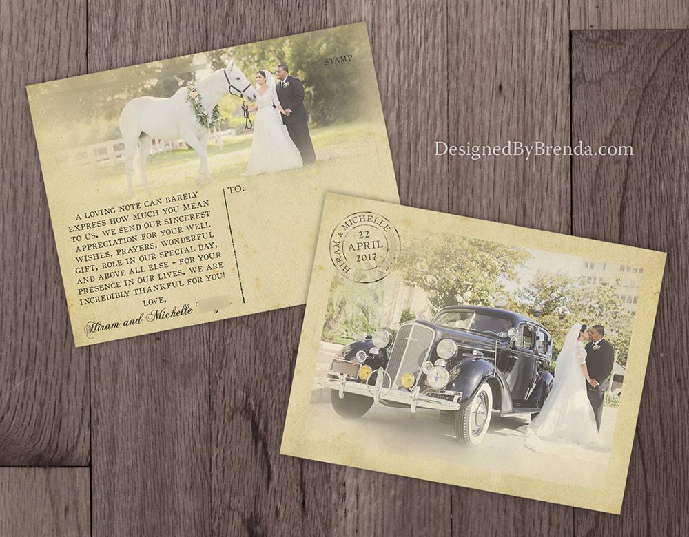 vintage horse postcard photo card example