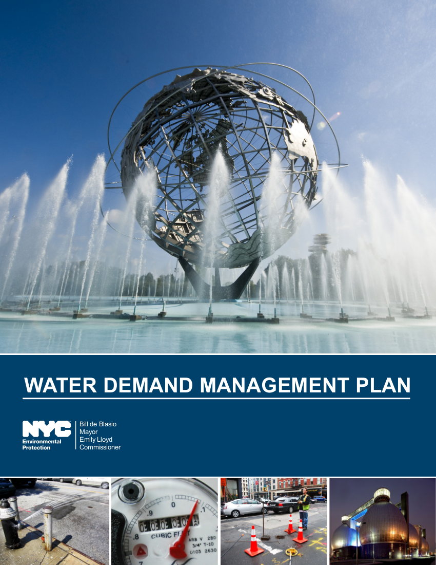 water demand management plan example