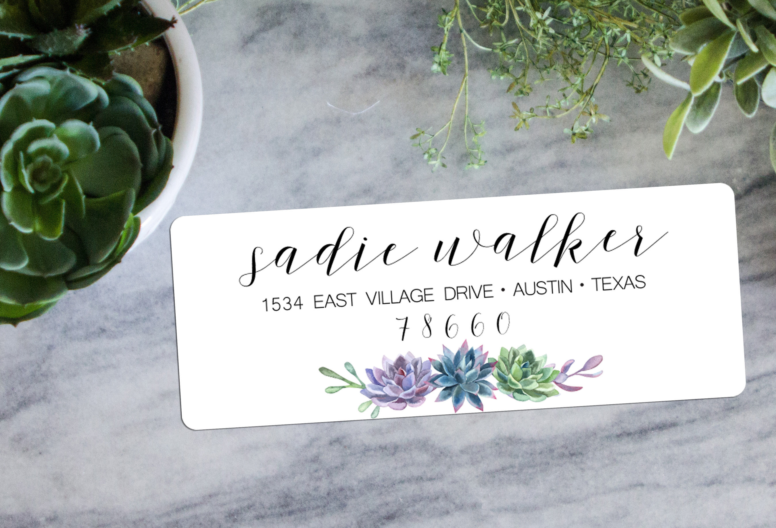 watercolor succulent address label example