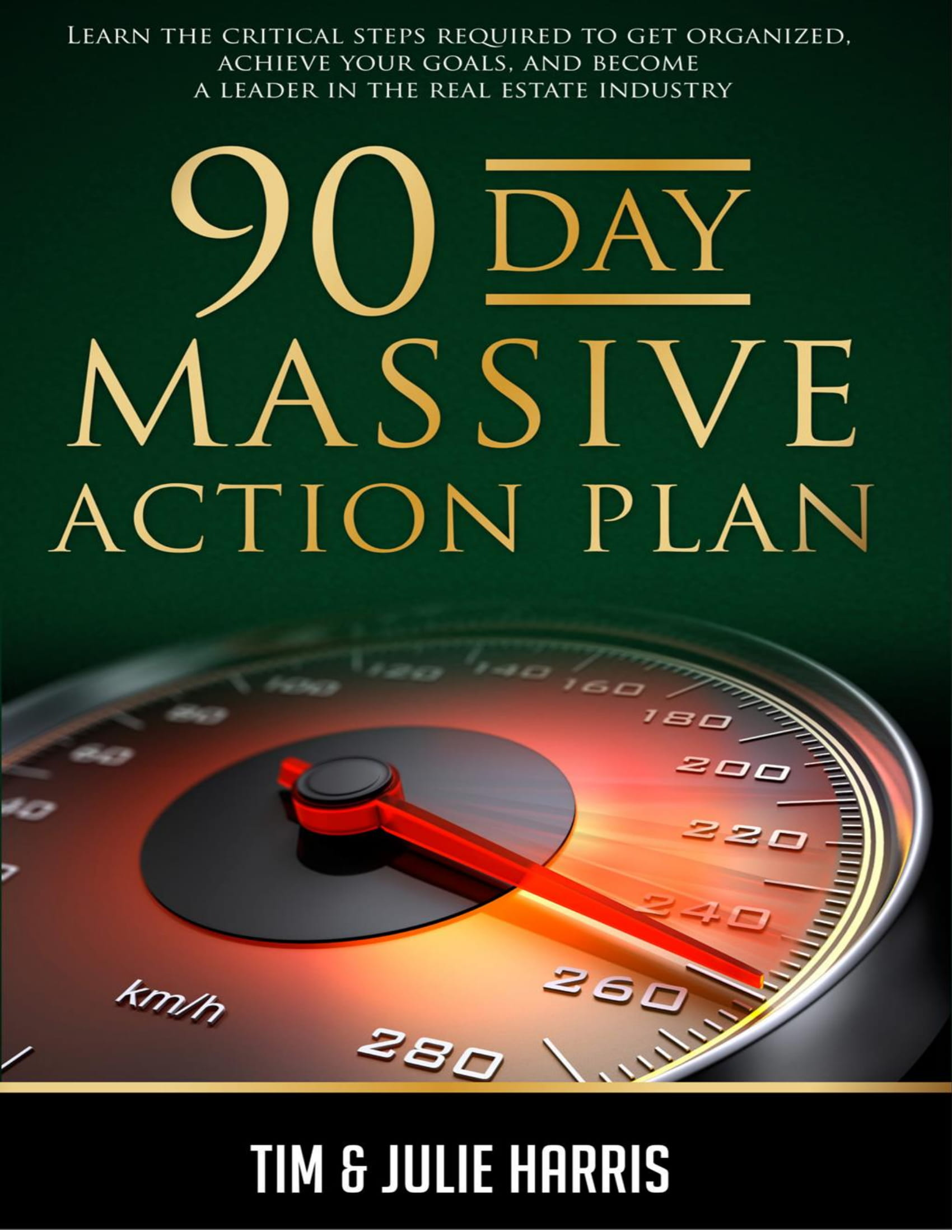 90 day massive action plan example