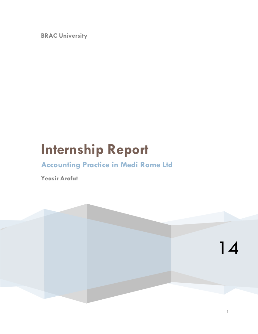 accounting internship report example