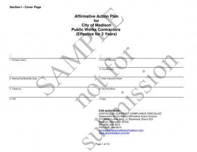 9 affirmative action plan examples pdf for Affirmative action policy template