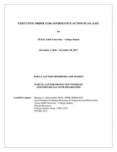 affirmative action plan for women minorities example