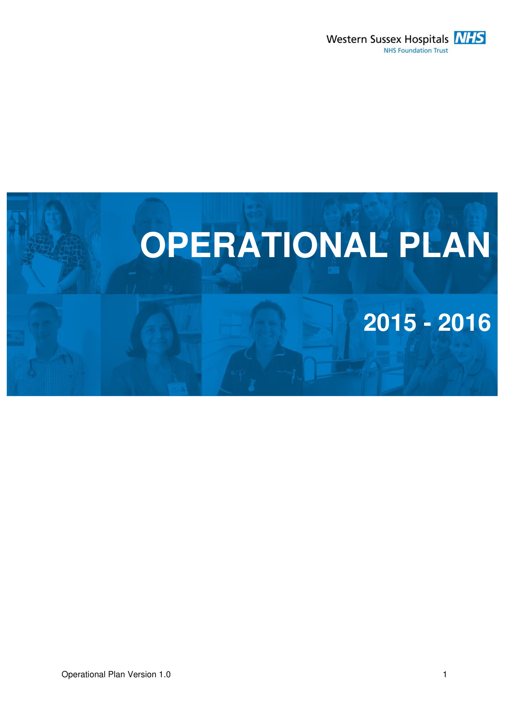 annual hospital operational plan example 01