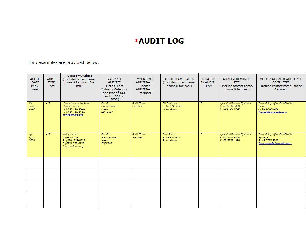 audit log template example