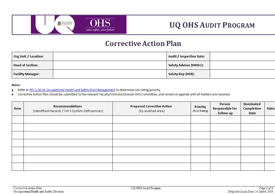 Audit Program Corrective Action Plan Format Example