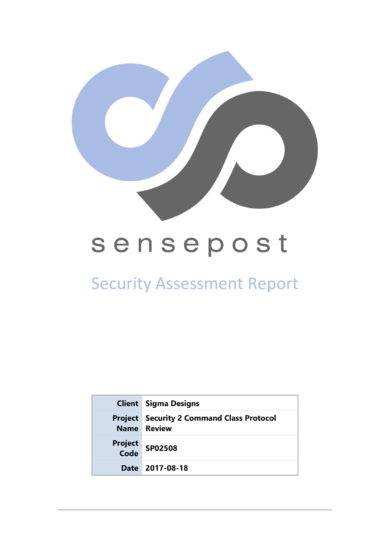 basic security assessment report example