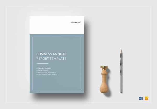 business annual report example